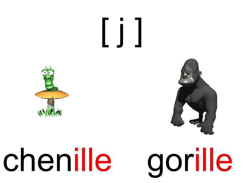 [ j ] chenille gorille